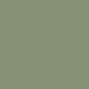 vitgrass